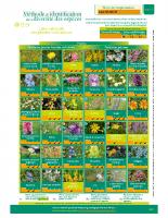 Fleurs_Line_Granon_pature