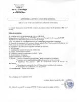 AFFICHE CONSEIL MUNICIPAL 25092020 A 20 HEURES_17092020